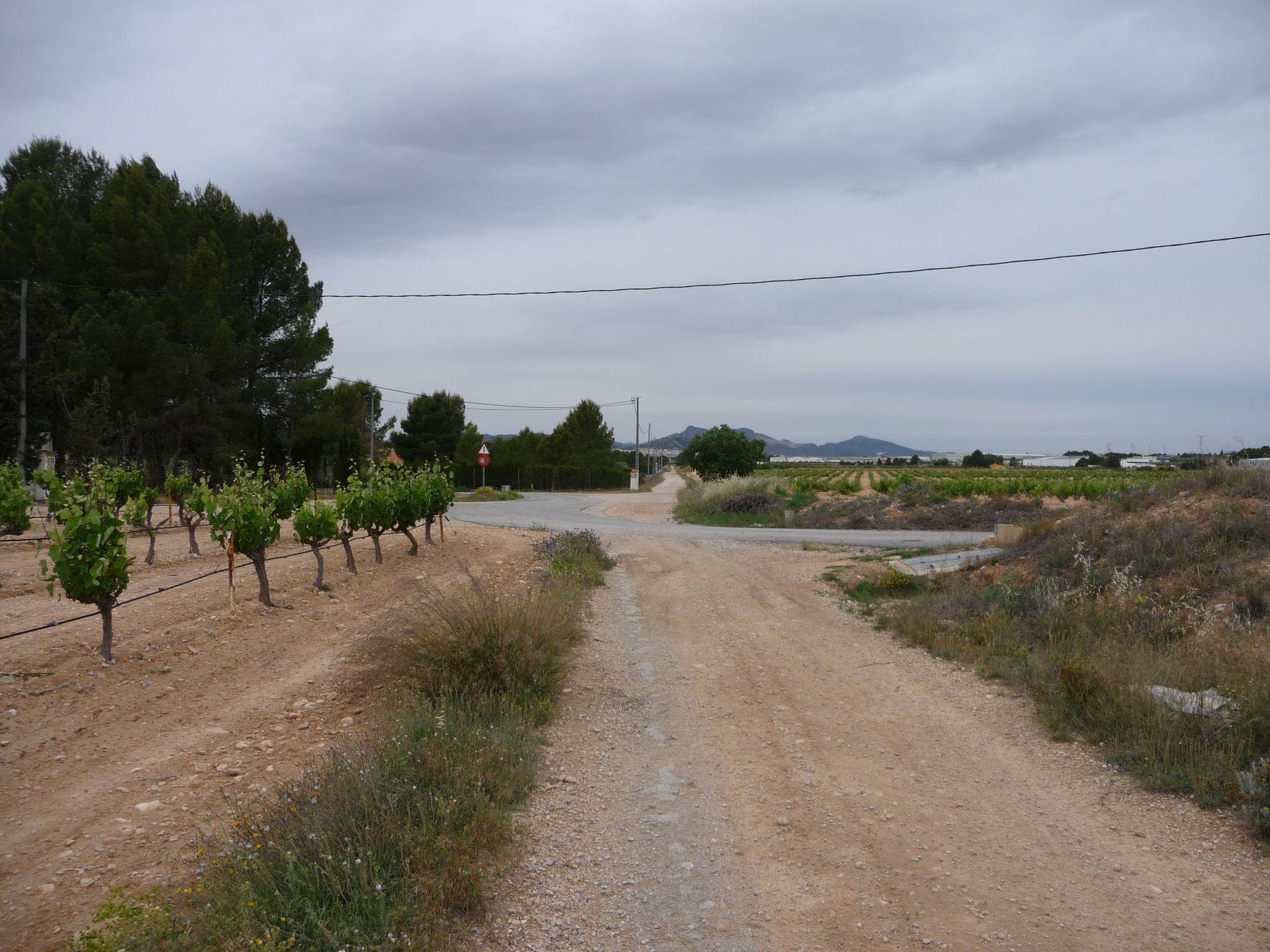 Un tramo en acondicionamiento de la Vía Verde del Chicharra. Imagen: CARM