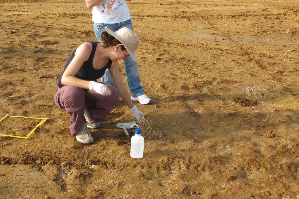 La investigadora Nazaret González, realizando trabajos de campo. Imagen: UPCT