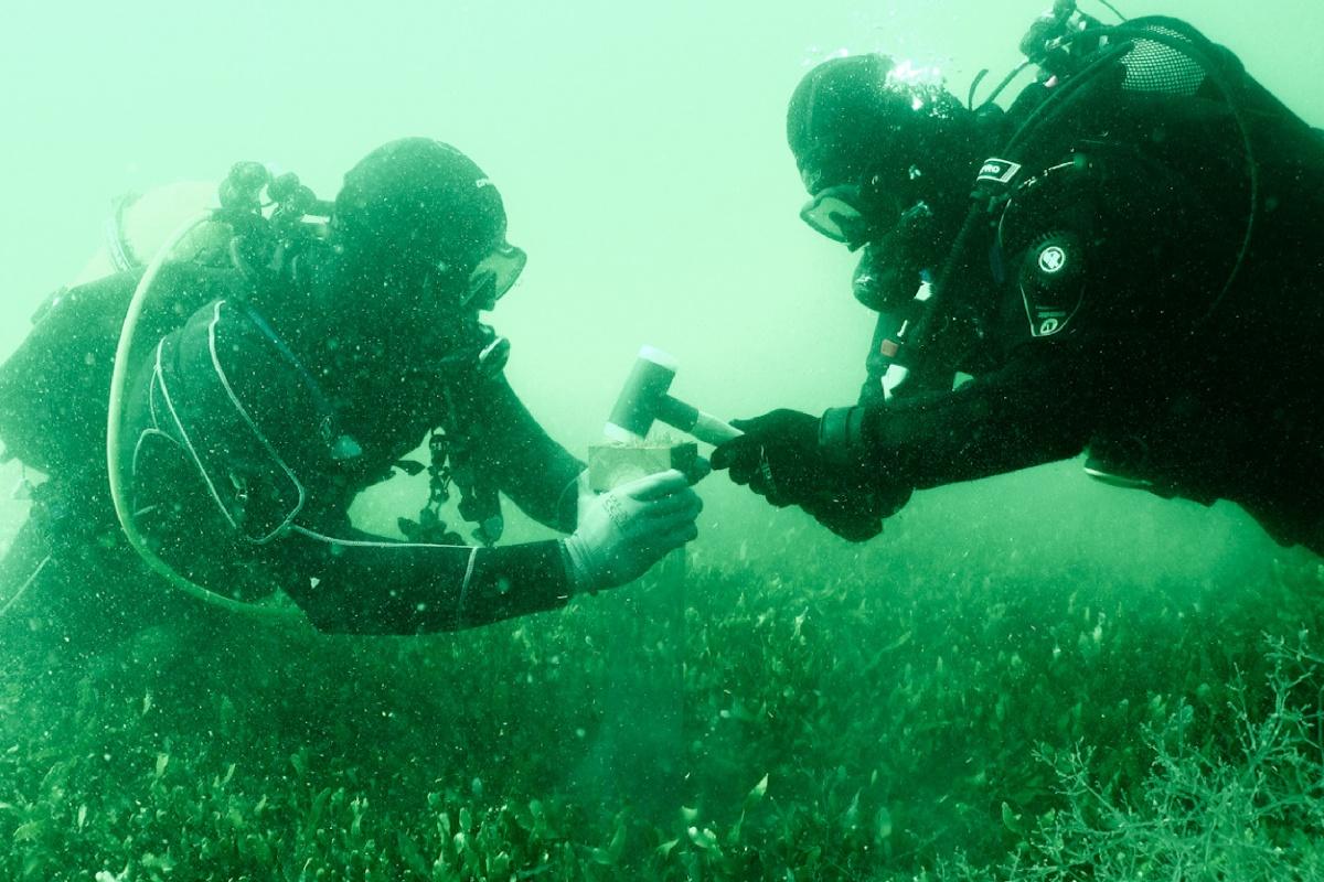 Submarinistas investigando los fondos del Mar Menor. Imagen: UPCT
