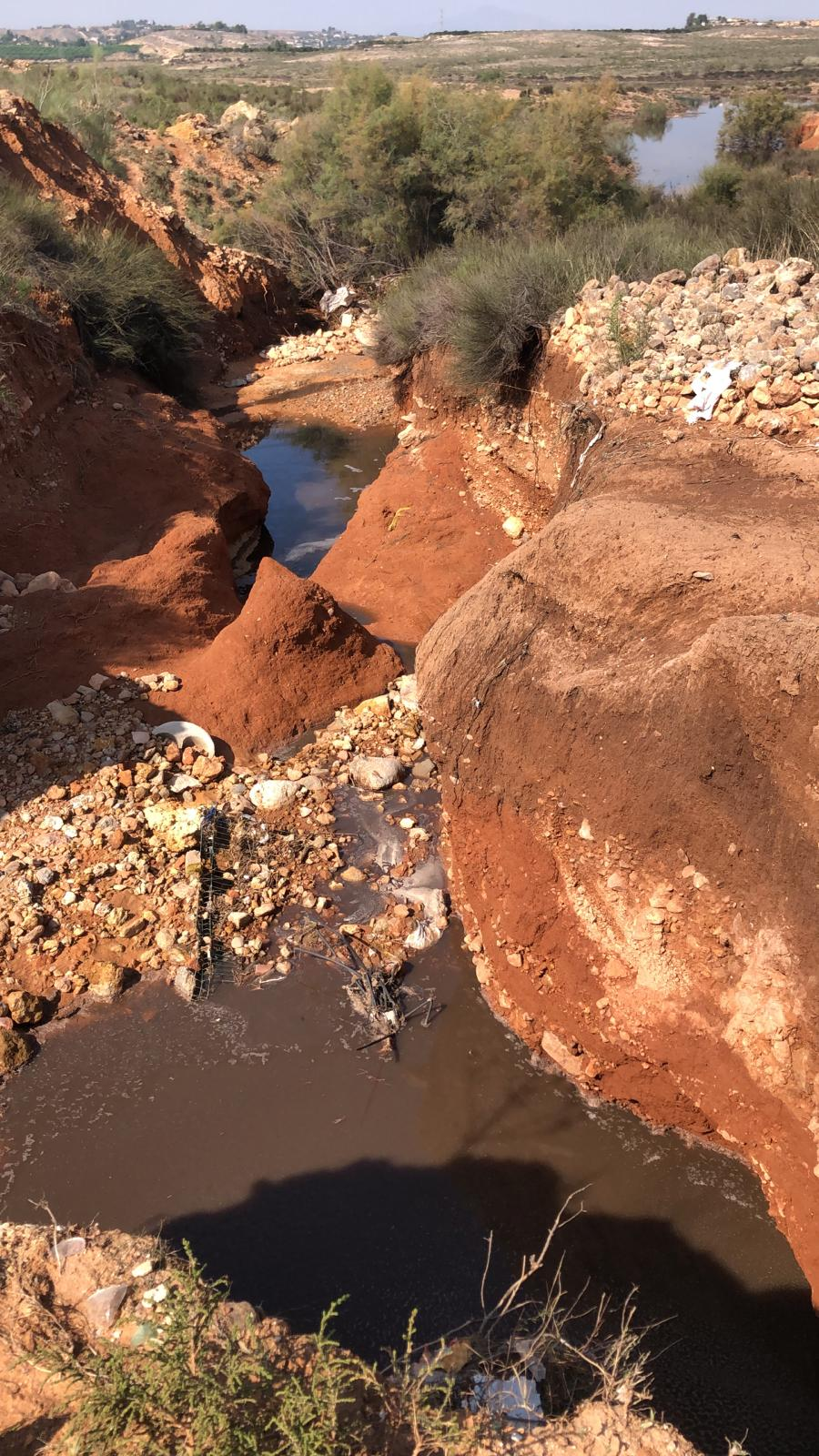 Vertido de purines al embalse de Santomera. Imagen: EEA