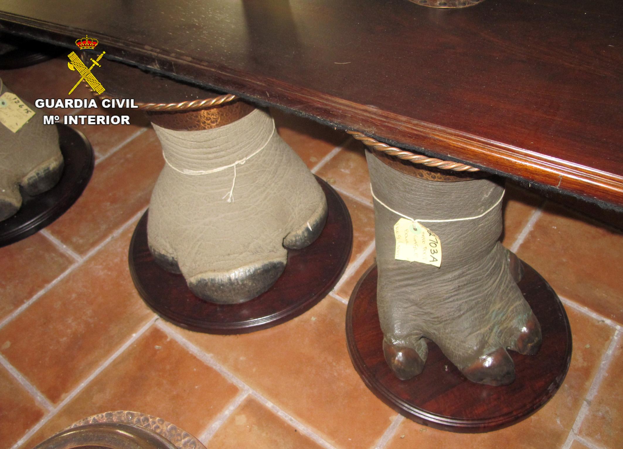 Pies de elefante situados bajo un mueble. Imagen: Seprona