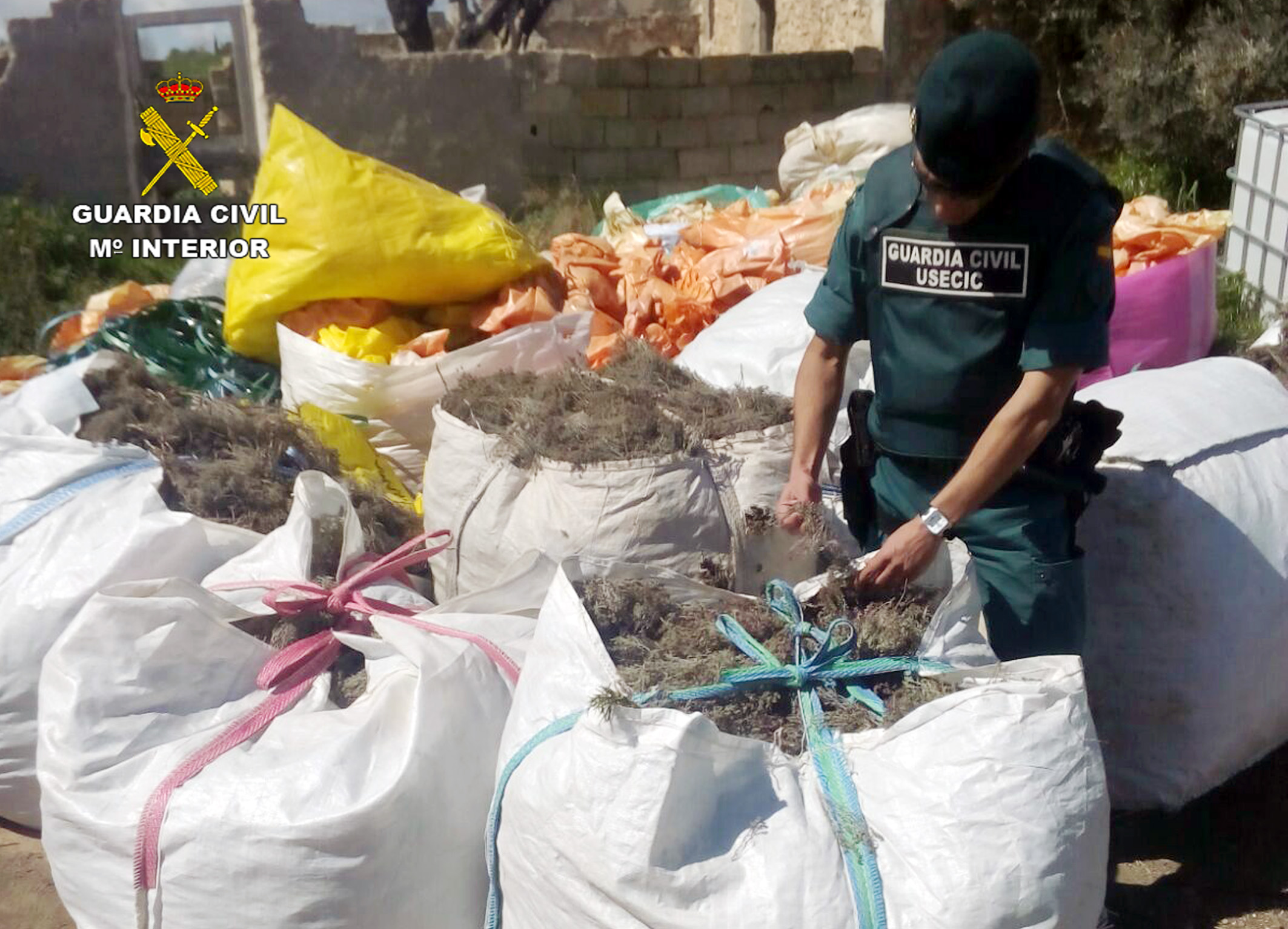 Imagen de las sacas con los cien kilos de tomillo y romero. Fotografía: Guardia Civil de la Región de Murcia