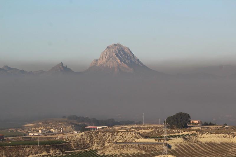 Ejemplo de prácticas de quemas antiheladas este año en Cieza. Imagen: EEA