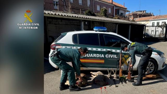 La Guardia Civil, en el marco de las operaciones Red Dot y Antitox IX, ha detenido y/o investigado durante el pasado año a 337 personas por delitos contra la biodiversidad. Imagen: Seprona
