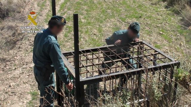 La operación ha servido para localizar numerosos cepos para grandes animales. Imágenes: Seprona