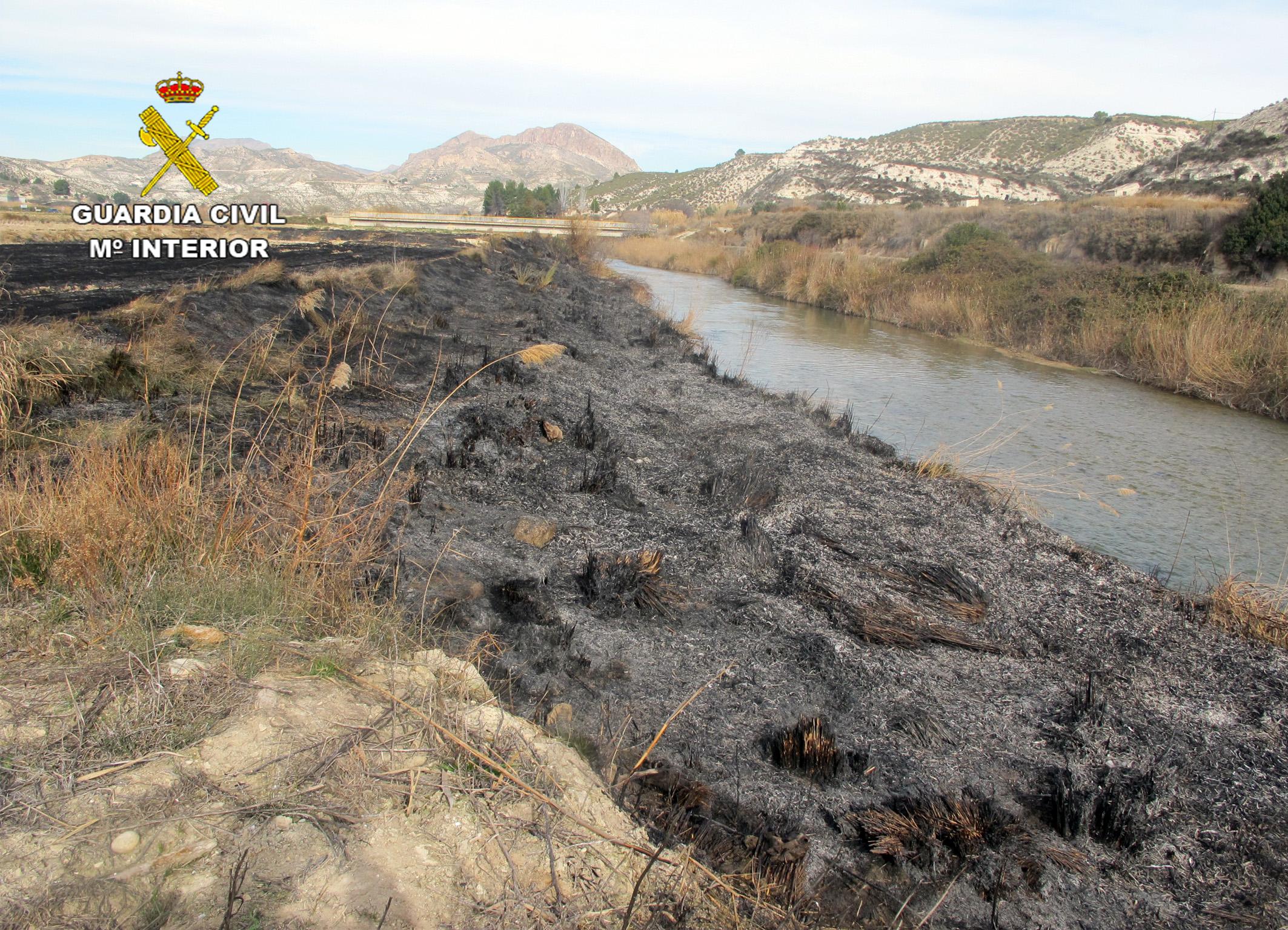 El fuego afectó a más de 4.000 metros cuadrados de terreno forestal con diversa vegetación. Imagen: Guardia Civil de Murcia
