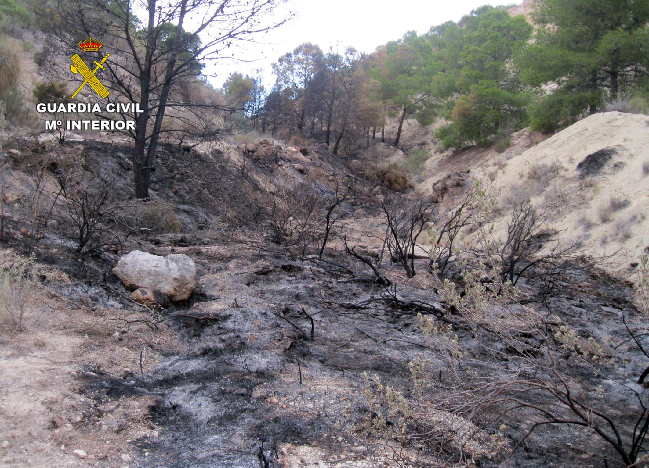 Aspecto del área afectada tras el incendio. Imagen: Guardia Civil
