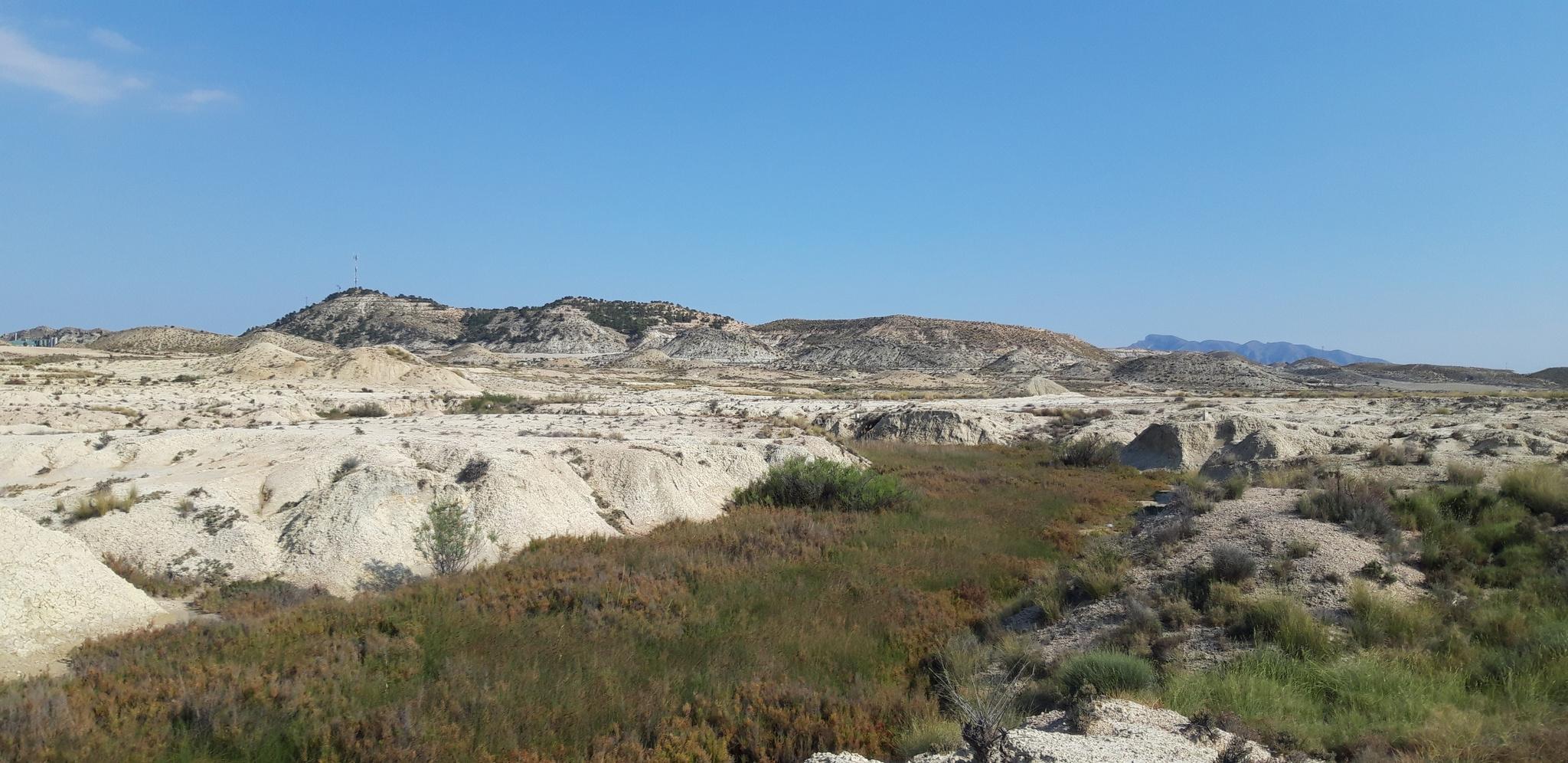 Imagen del paraje Lozorra, próximo al espacio natural protegido del 'Humedal de Ajauque y Rambla Salada', en el término municipal de Fortuna. Imagen: CARM
