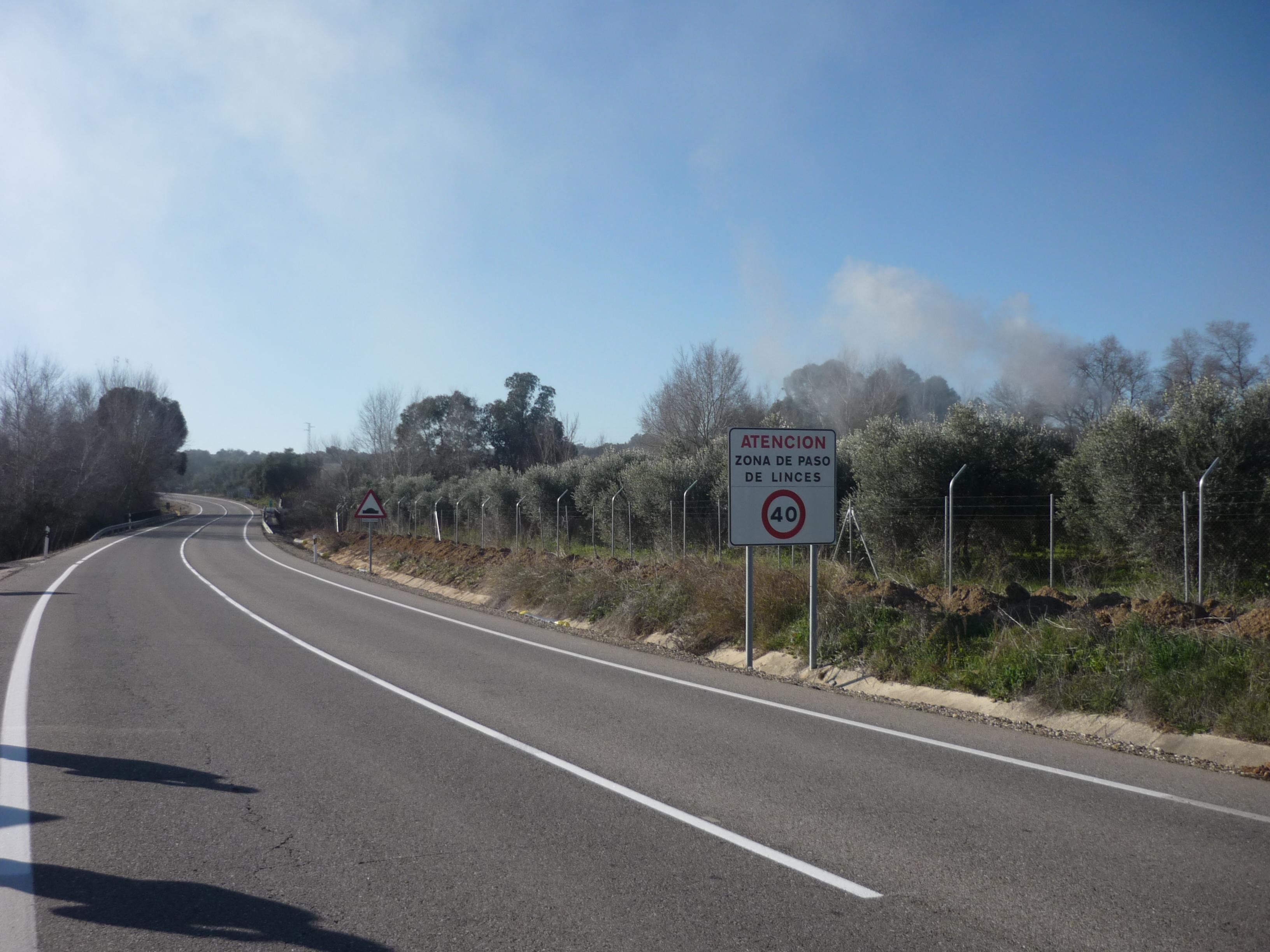 Cartel avisando del paso de lince en una carretera. Imagen: Miteco