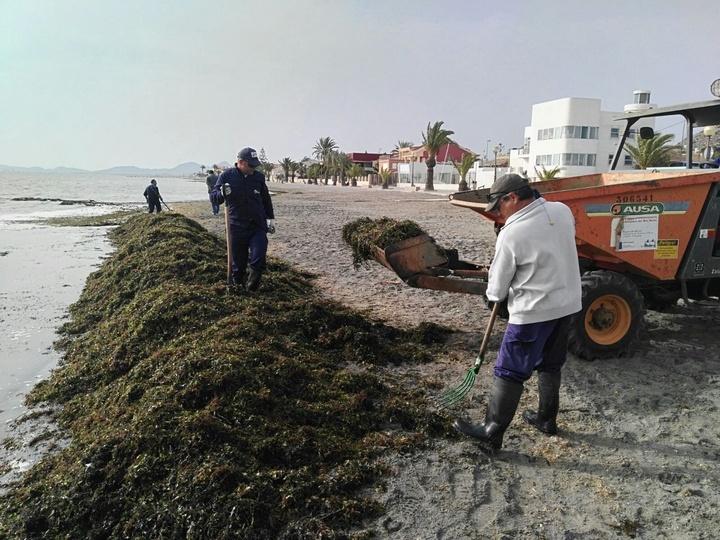 Brigadas de Limpieza del Mar Menor. Imagen: CARM
