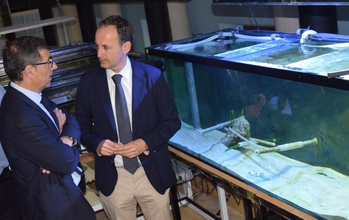 El consejero de Empleo, Universidades, Empresa y Medio Ambiente, Javier Celdrán, y el rector de la Universidad de Murcia (UMU), José Luján, han visitado al acuario de esta universidad para informar del proyecto 'Banco de Especies del Mar Menor'. Imagen: CARM