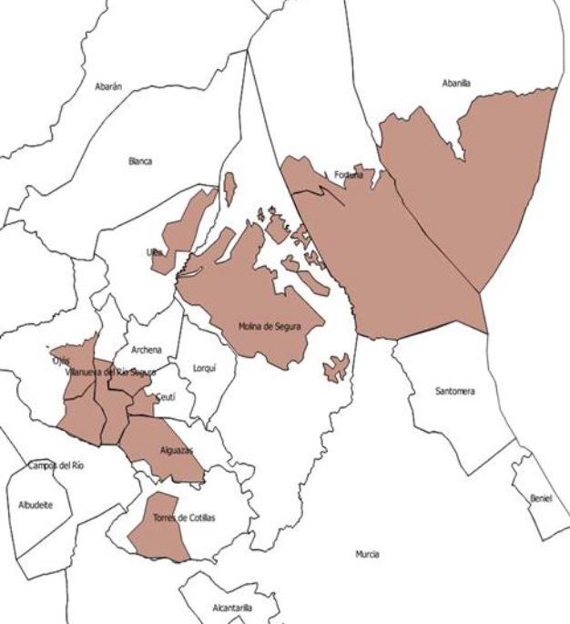 Áreas en las que entra en vigor la Orden de Comarca de Emergencia Temporal por alta proliferación de conejo. Imagen: CARM