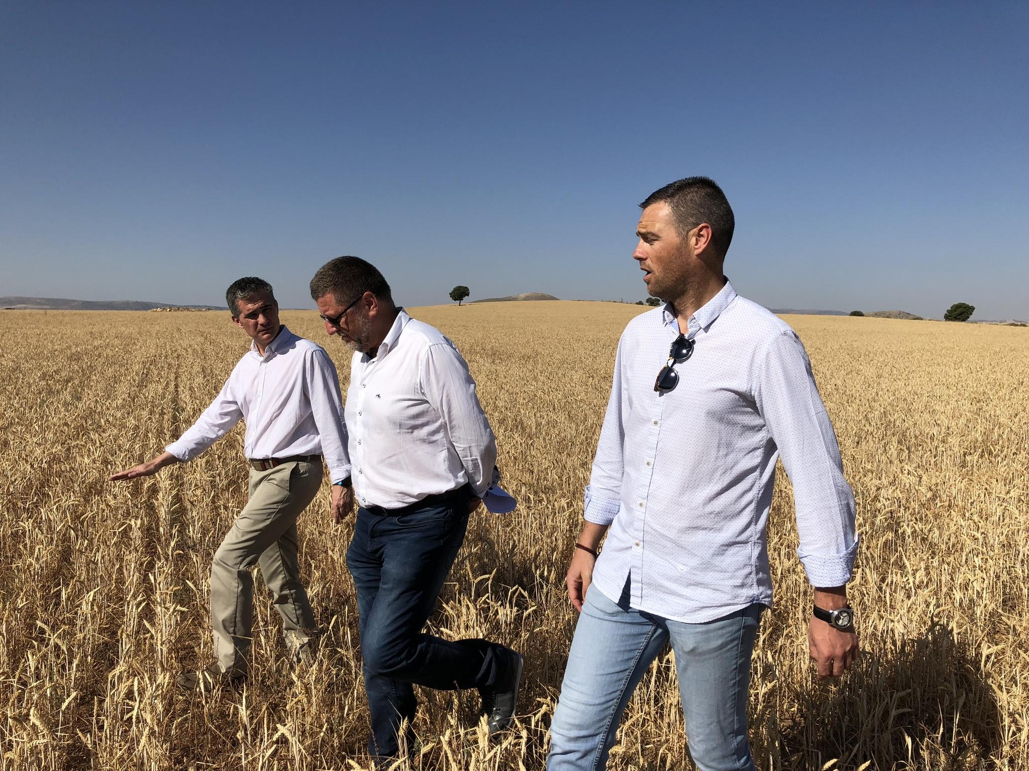 El consejero Miguel Ángel del Amor durante su visita a una finca beneficiaria de las ayudas europeas agroambientales. Imagen: CARM