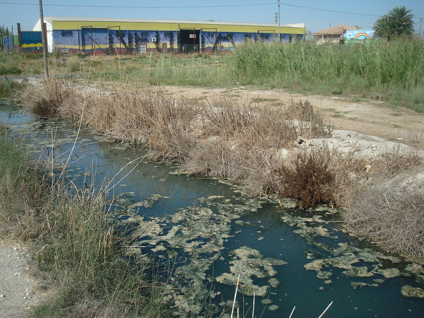 Acequia de Benipotrox. Imagen: Huerta Viva