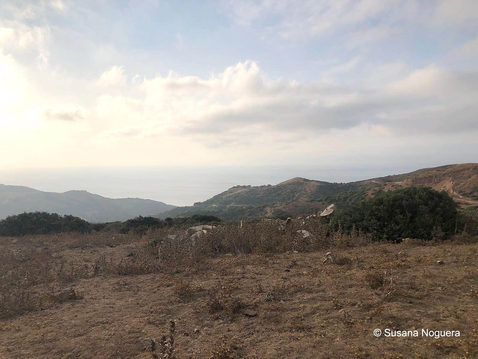 África cubierta vista desde el observatorio de Las Antenas. Imagen: Susana Noguera