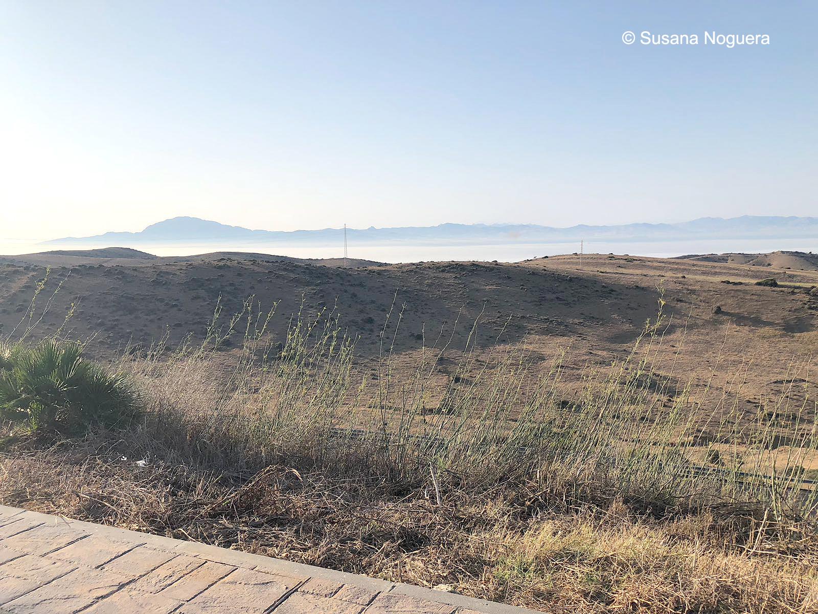 La costa de África, vista desde el observatorio de Cazalla. Imagen: Susana Noguera