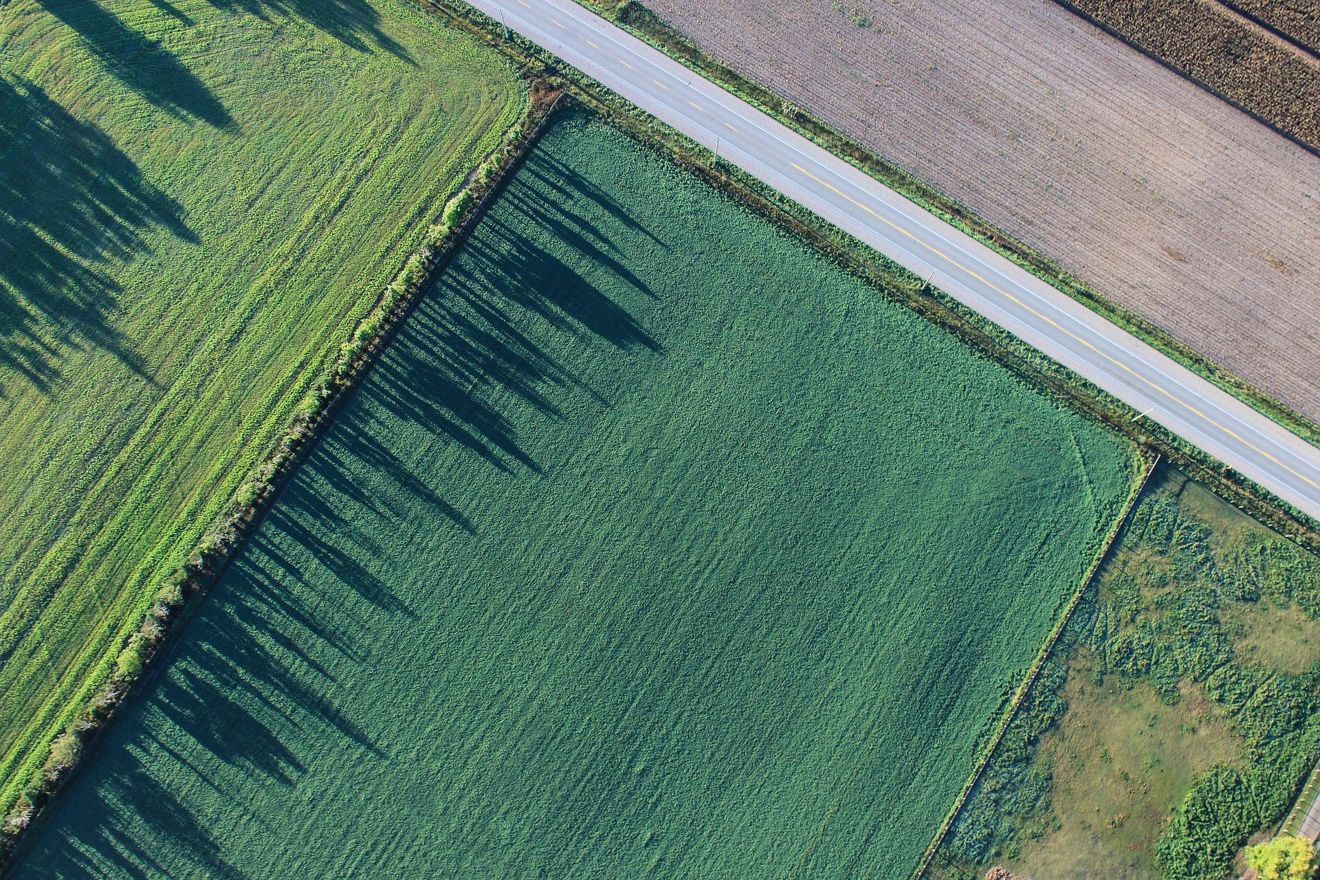 Paisaje agrícola parcelado y diversificado. Imagen: CSIC