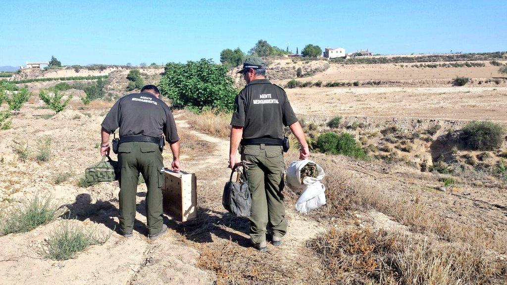 Imagen: AM Región de Murcia