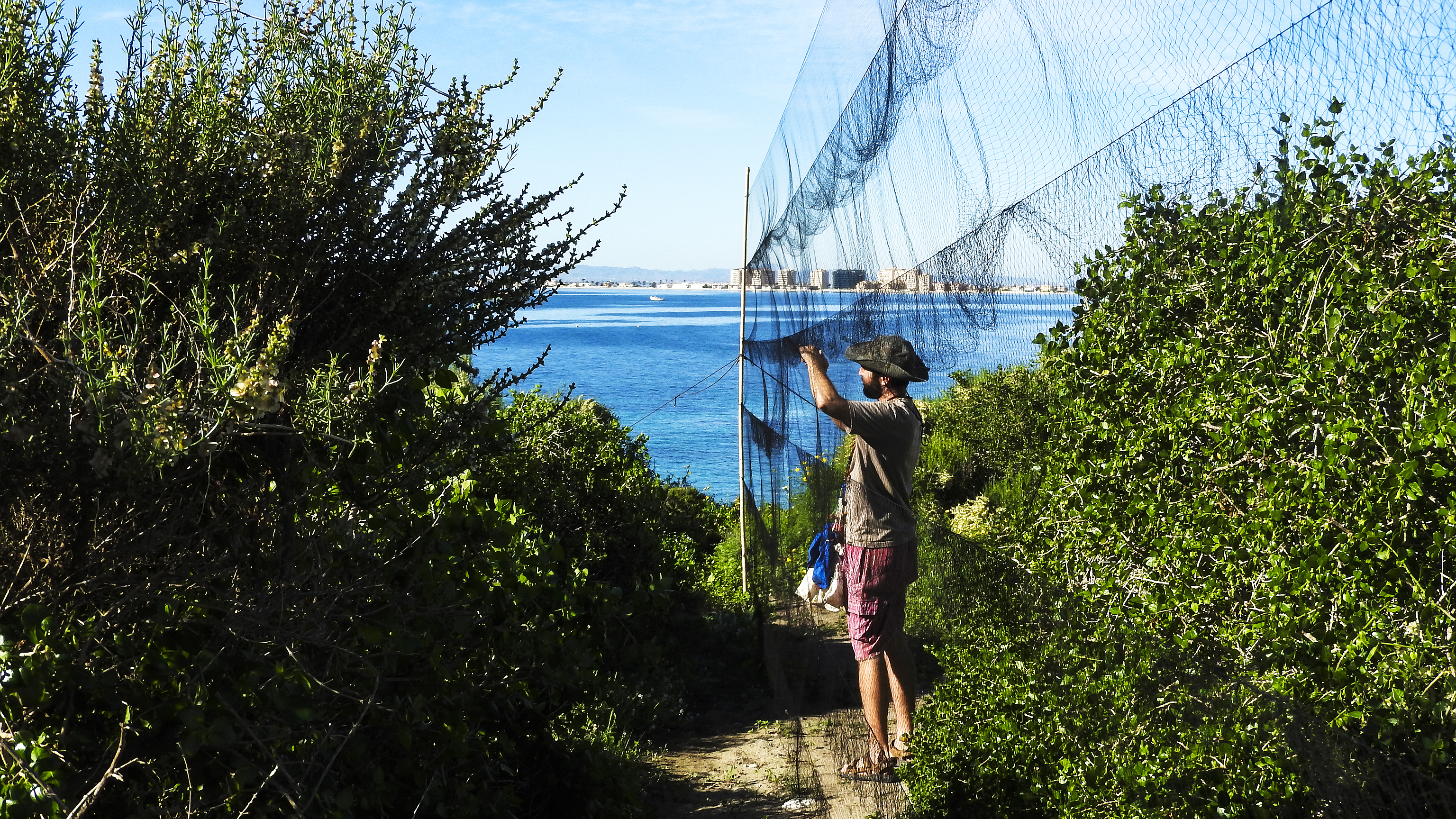 Un momento del cuidadoso trabajo en las redes. Imagen: A.Palacios/ANSE