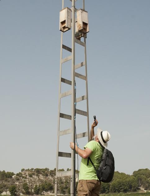 Las cajas se han ubicado a alturas de entre 2.4 y 5.9 metros. Imágenes: A. Portillo y A. Guardiola/ANSE