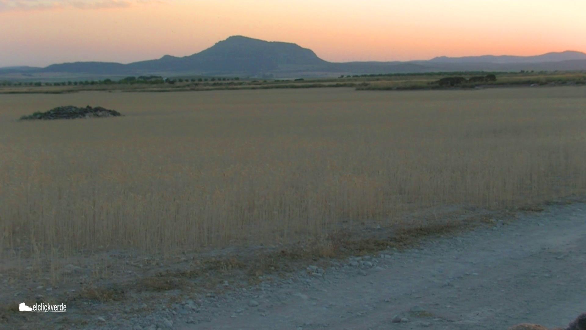 Vista del mítico monte Arabí, al atardecer