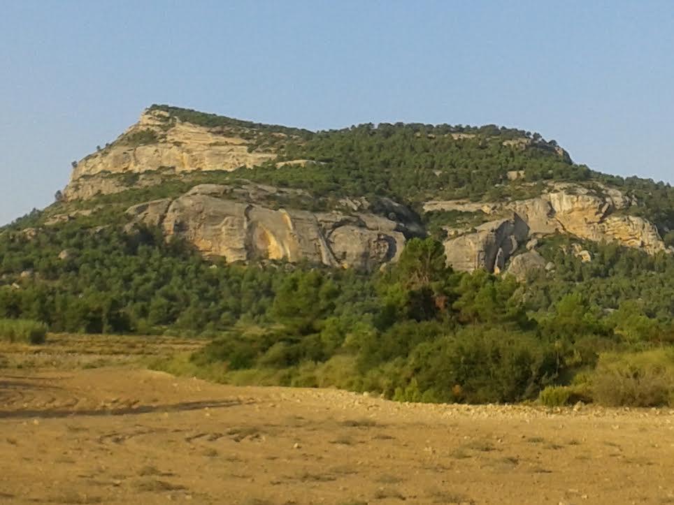 Imagen del Monte Arabí, cedida por Fernando Rico, presidente de Anida Yecla