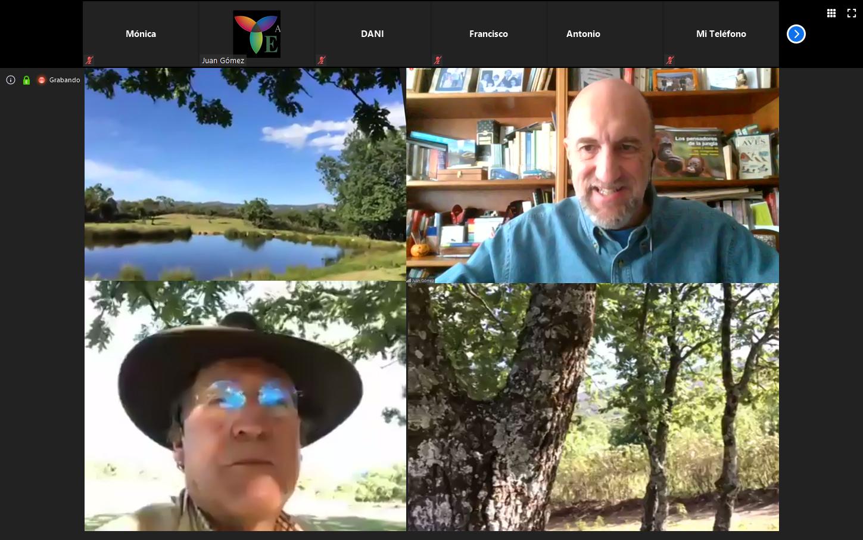 Cuatro capturas de diversos momentos de la videoconferencia. Arriba a la derecha Juan Gómez, de Ecotono; abajo Araújo, y dos imágenes de la finca del naturalista en Extremadura