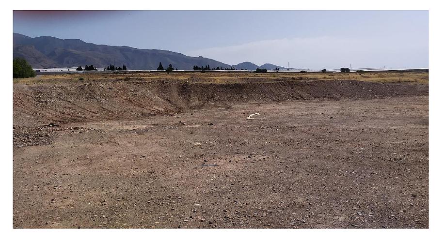 Zona de artales arrasada en Santa María del Águila. Imagen: CSIC