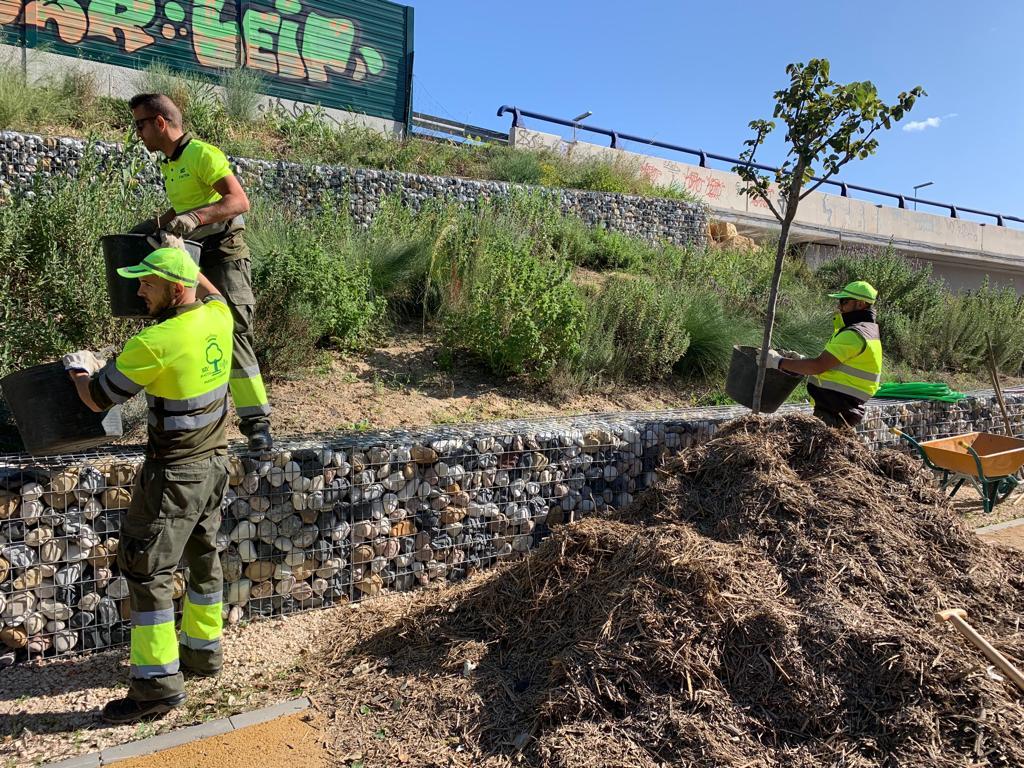 El material se está extendiendo en distintos espacios verdes del municipio. Imagen: Ayto. de Murcia