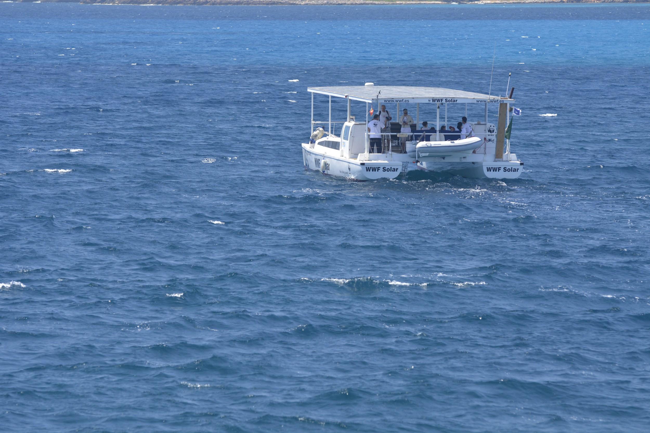 El catamarán de la campaña 'Embárcate con el WWF Solar' ya está otro año más en marcha. Imagen: WWF