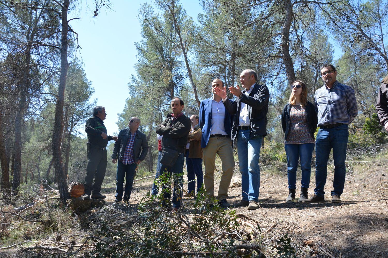 El director general Federico García Izquierdo supervisó los trabajos de la primera fase del Plan Especial para la Biomasa, acompañado por técnicos de su departamento. Imagen: CARM