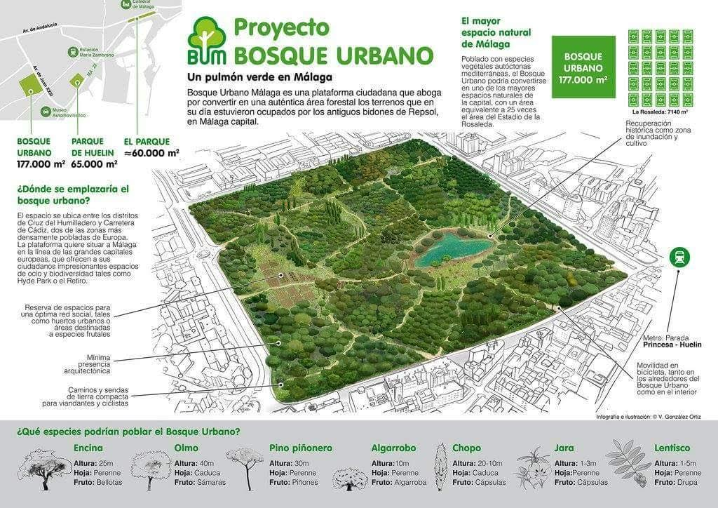 Plano de la propuesta del futuro Bosque Urbano de Málaga.