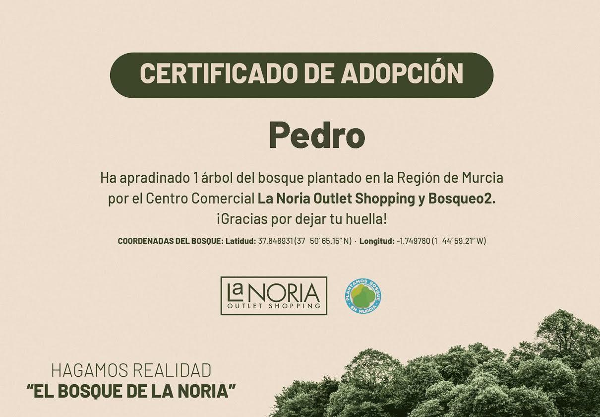 Uno de los certificados de apadrinamiento. Imagen: Bosqueo2 y Centro Comercial La Noria