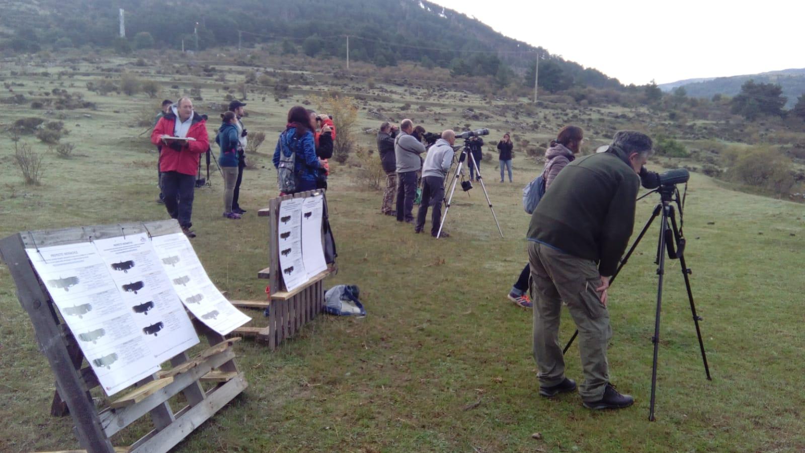 Varias personas observan los movimientos de los buitres negros liberados. Imagen: Grefa