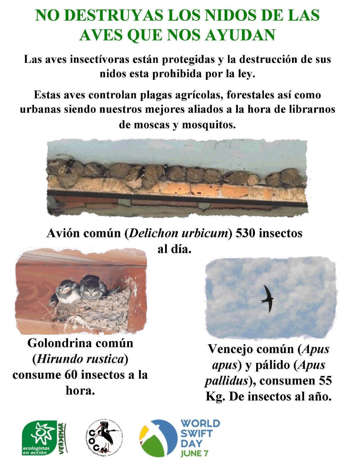 Cartel de la campaña de Verdemar-Ecologistas en Acción (EEA) y el Colectivo Ornitológico Cigüeña Negra (COCN) para proteger los nidos de aves insectívoras en la ciudad