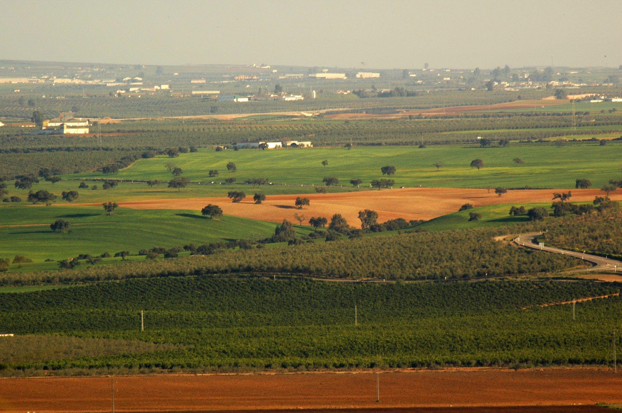 Uno de los paisajes cordobeses que se verían modificados radicalmente por el nuevo boom industrial. Imagen: Pcaeh
