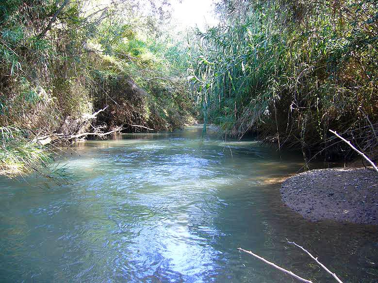 Cañaverosa, territorio de la nutria (imagen: Belén Escudero).