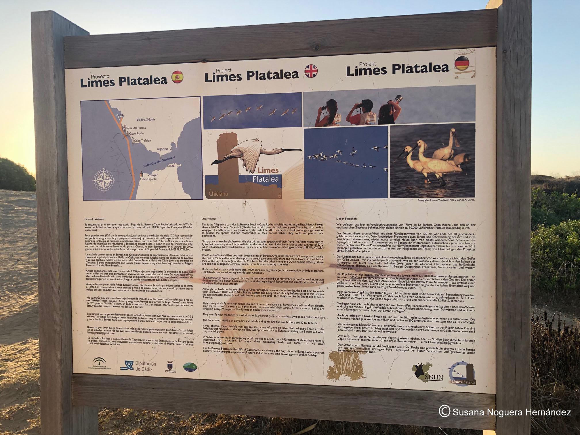 Cartel del Proyecto Limes Platalea, junto a la Torre del Puerco (Chiclana de la Frontera). Imagen: SNH