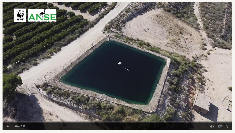 Captura de un vídeo grabado por WWF y ANSE desde un dron, y realizado por José Luis Regalado. Imagen: WWF-ANSE