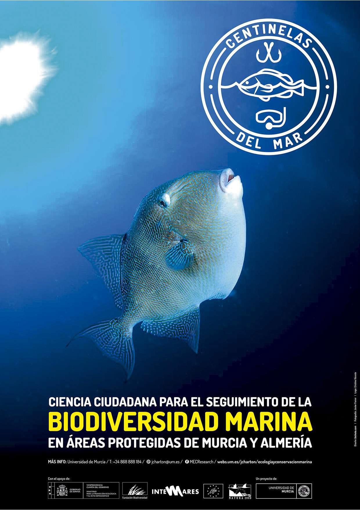 Cartel del proyecto de ciencia ciudadana Centinelas del Mar