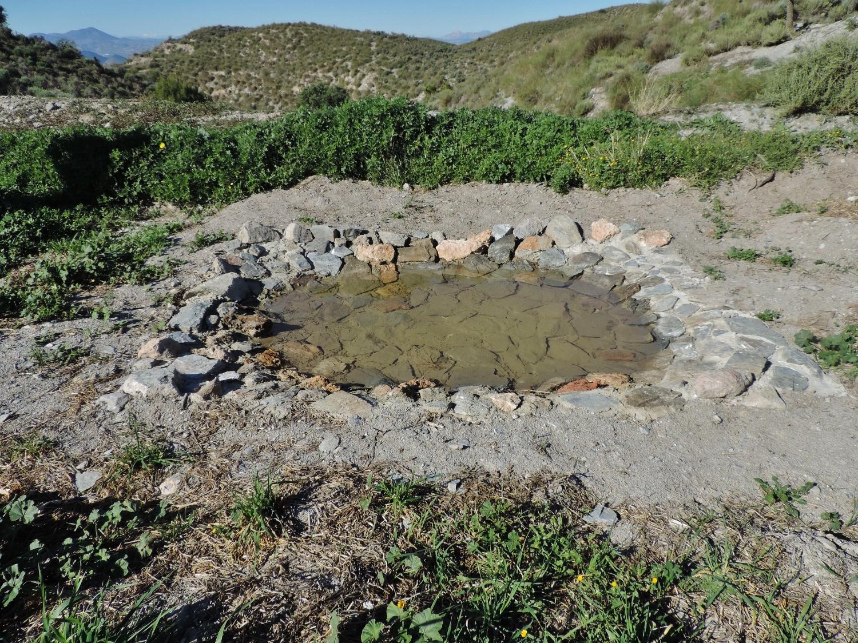 Charca para la reproducción de anfibios y para que la fauna silvestre disponga de agua para beber. Imagen: Acude