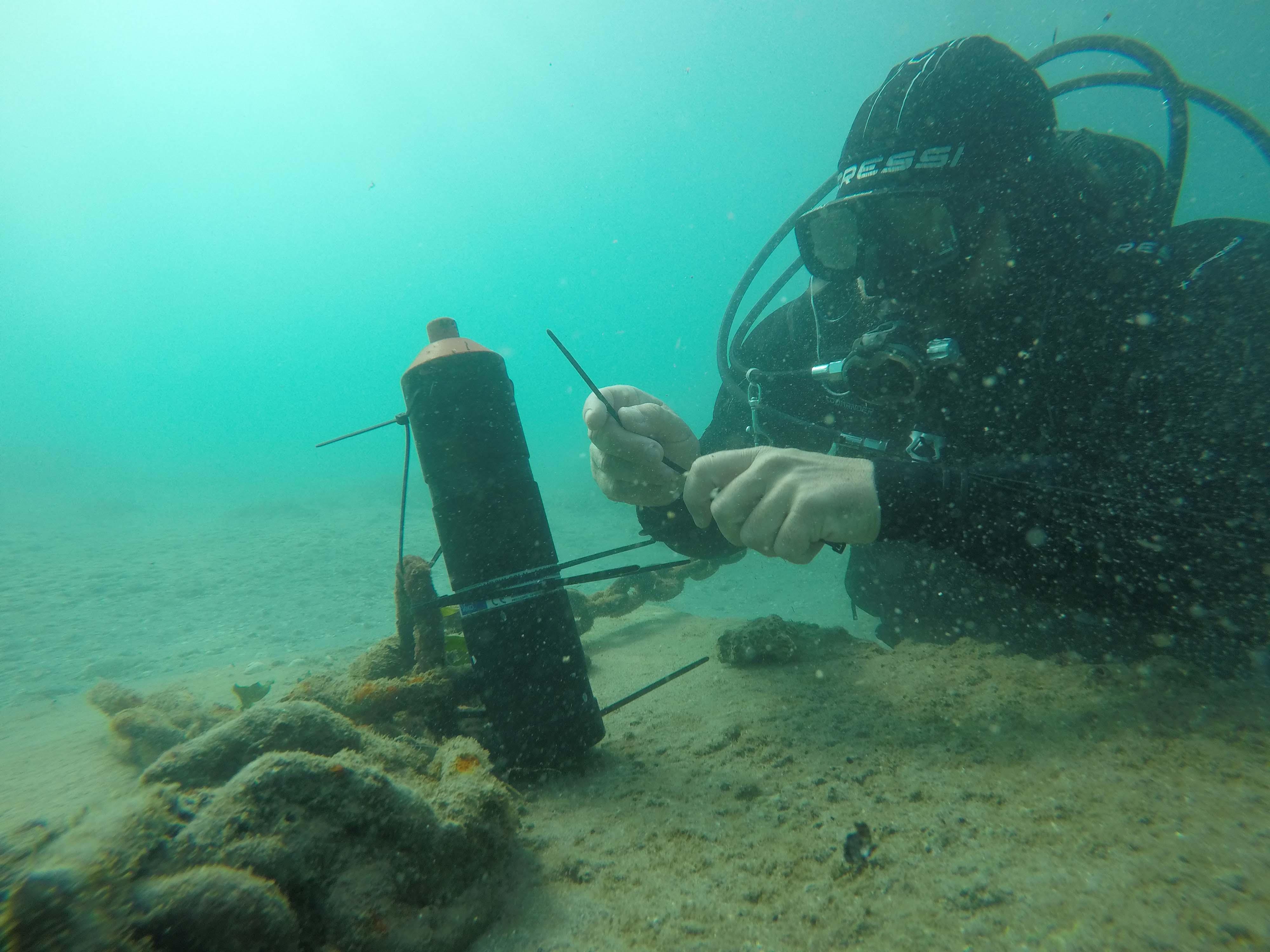 Colocación de receptores de anguilas. Imagen: Pedro García / ANSE
