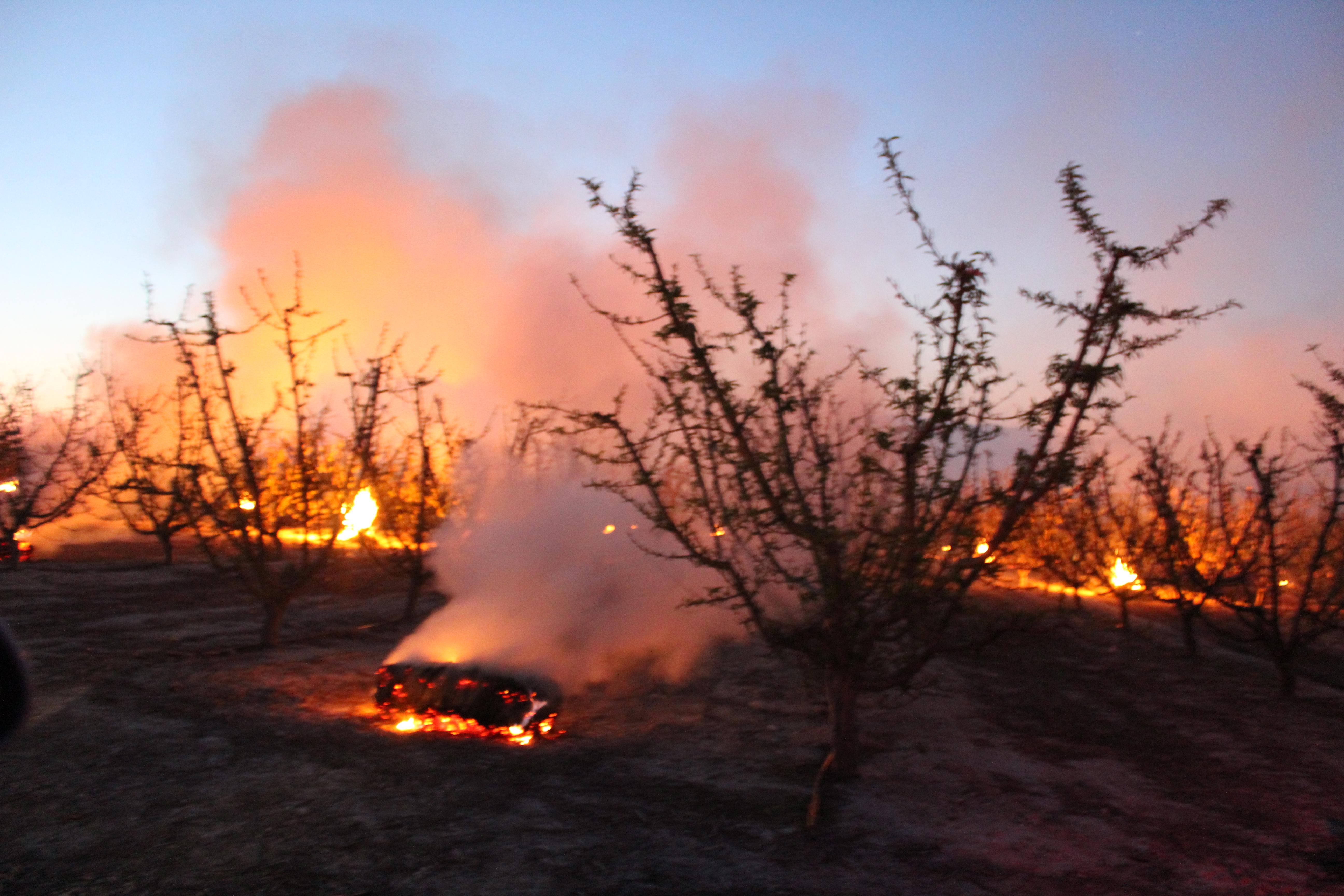 Balas antihelada quemándose en Cieza. Imagen: José Antonio Herrera Sánchez / EEA