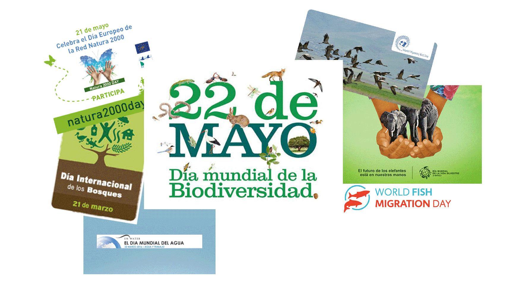 Algunos de los Días Internacionales relacionados con la naturaleza