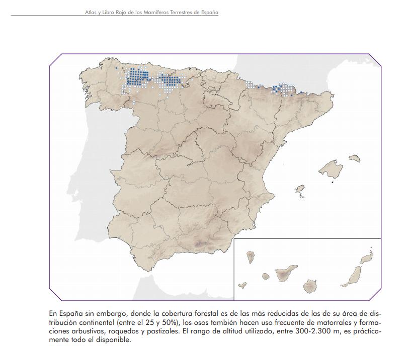 Distribución del oso pardo en España, según se recoge en el Atlas y Libro Rojo de los Mamíferos Terrestres de España, en un trabajo elaborado por Guillermo Palomero. Imagen: Miteco