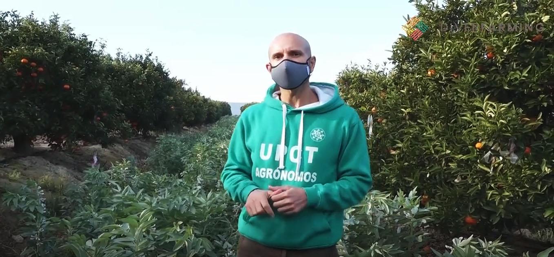 Fotograma del vídeo que acompaña a la noticia. Imagen: UPCT