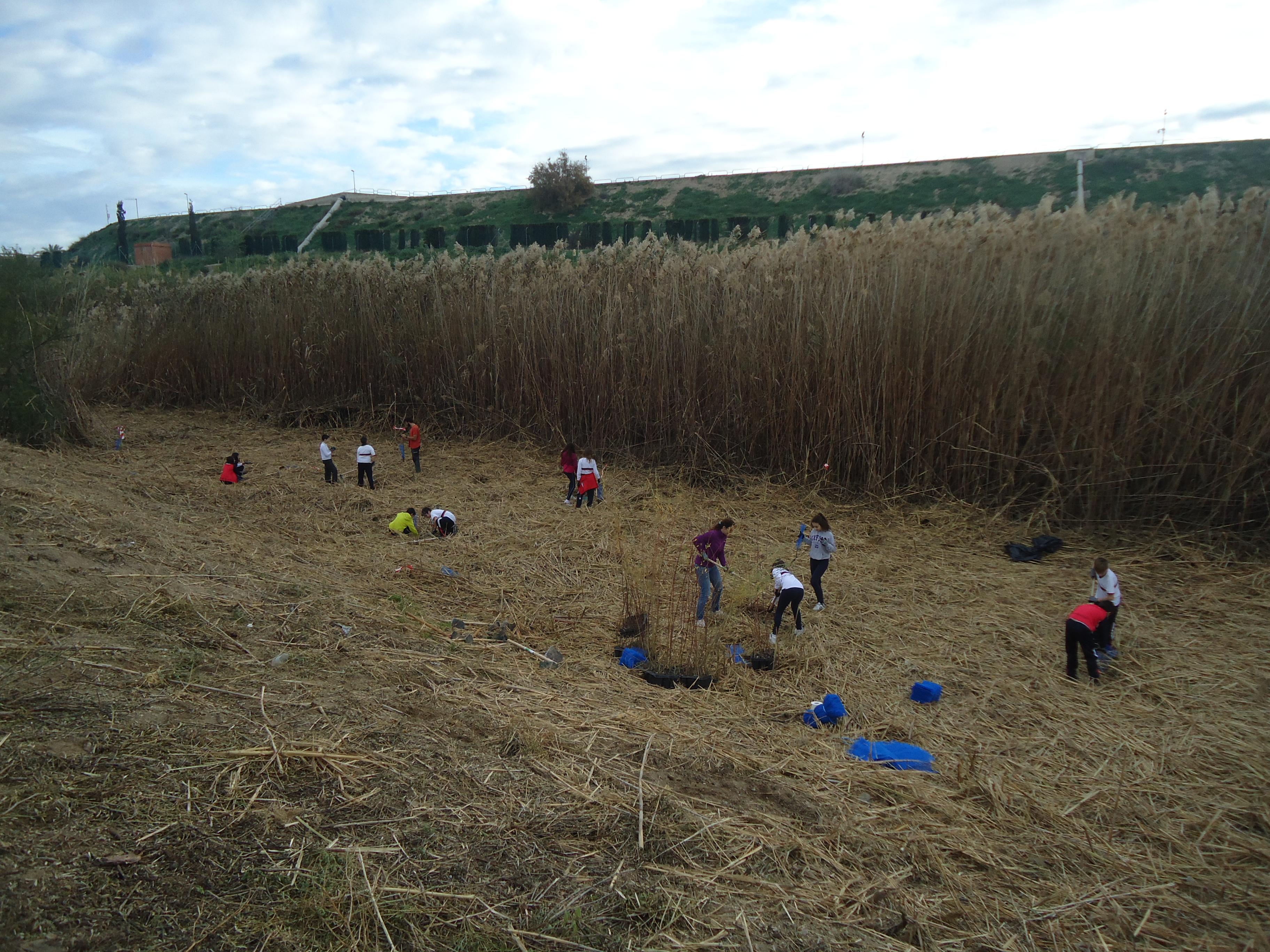 Un momento de la la actividad el pasado jueves con los alumnos de 1º de ESO del CES Samaniego (Alcantarilla). Imagen: ANSE