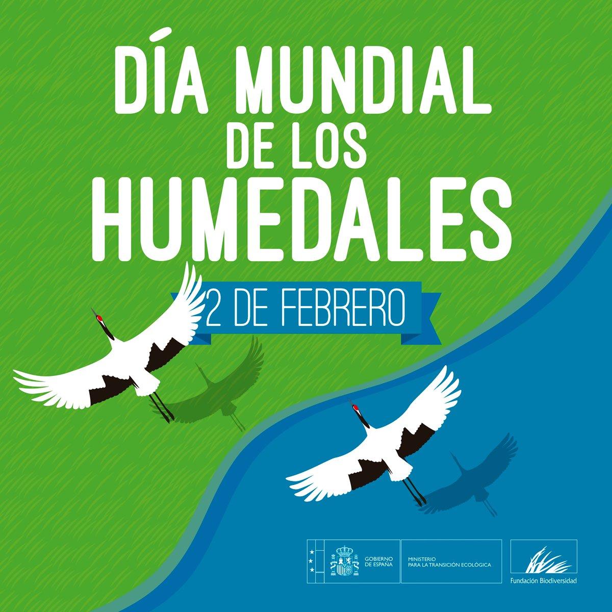 Día Mundial de los Humedales. Cartel del Miteco