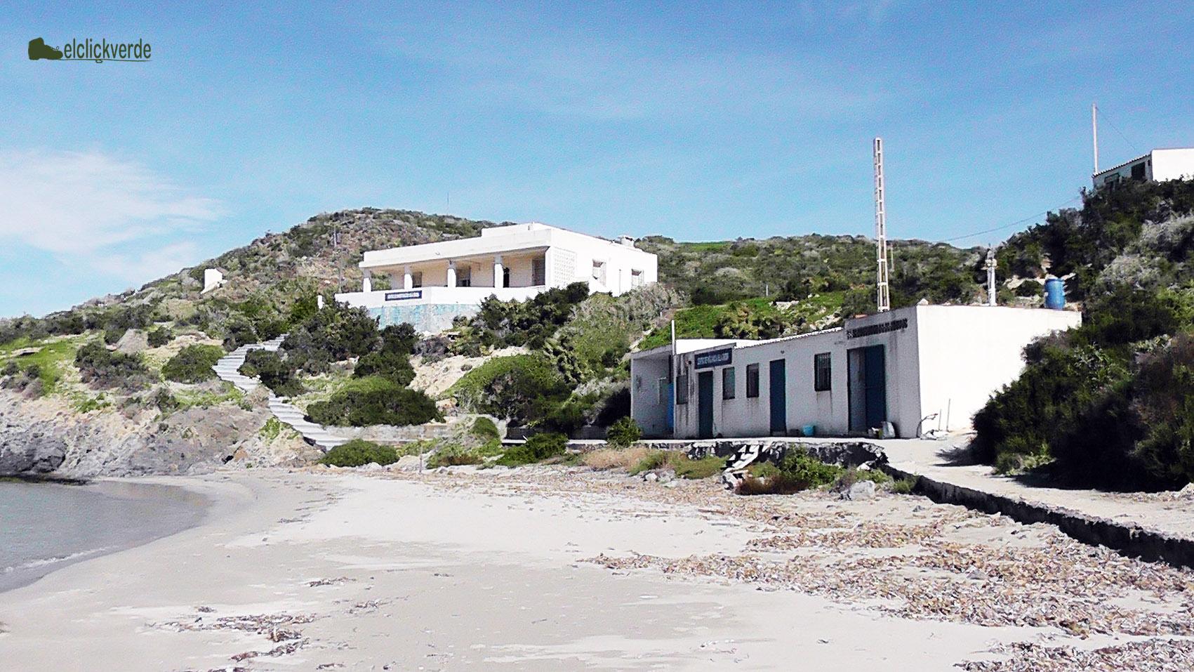 Los edificios para la estancia de los voluntarios están a pie de playa.
