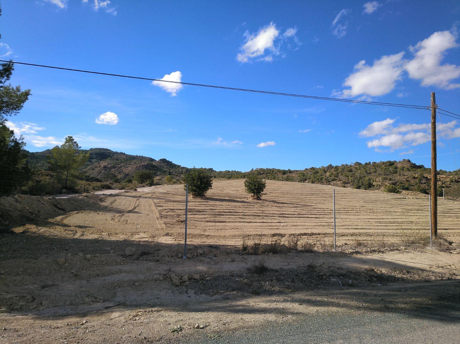 Roturación para regadío ilegal en Murcia (Los Manzanos). Imagen: EEA